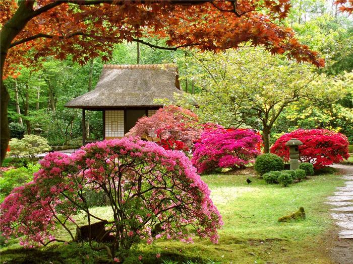 Сад в японском стиле являет собой