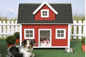Дизайн будки для собаки